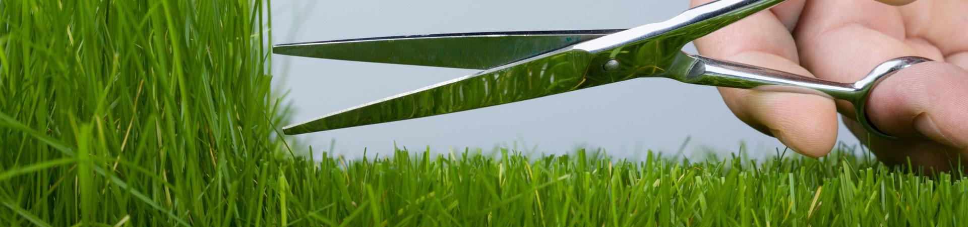 scissor-cutting-grass