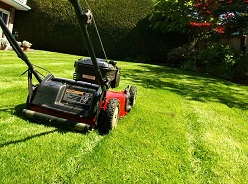 Residential Lawn Care Edmonton | Weekly Lawn Care