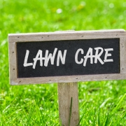 Spring Tips To Rejuvenate Your Lawn